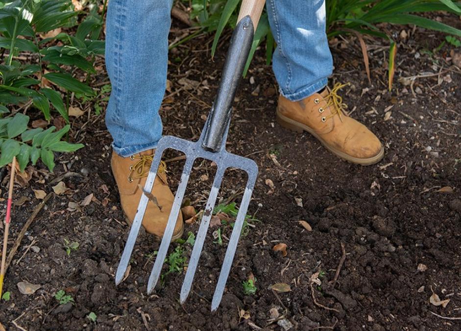 Best garden forks