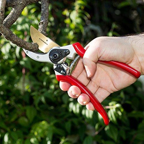 manual pruning shears