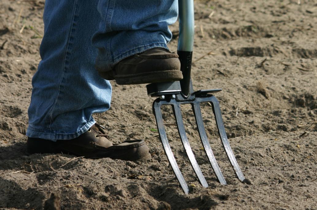 using digging fork