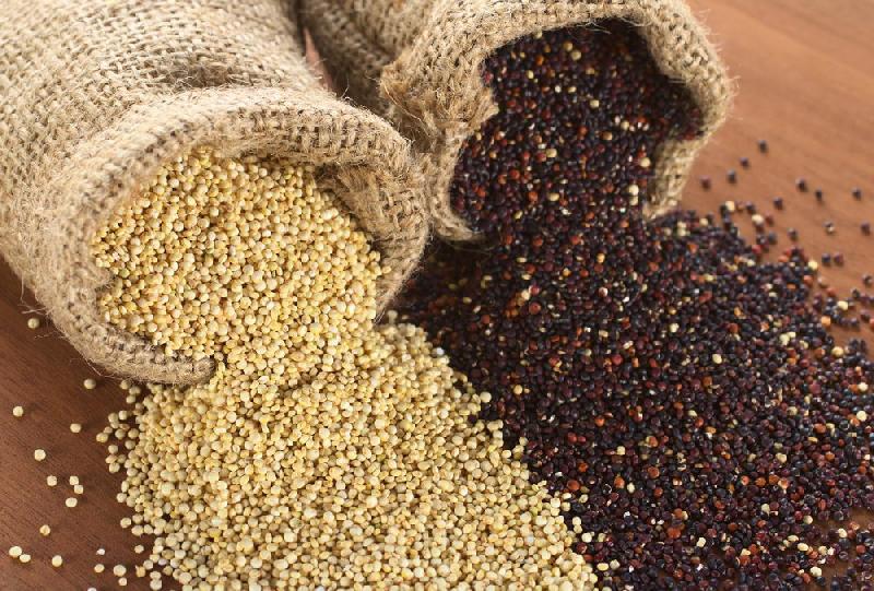 quinoa seeds uk